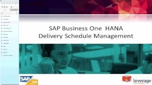 Delivery Management Scheduling in SAP Business One